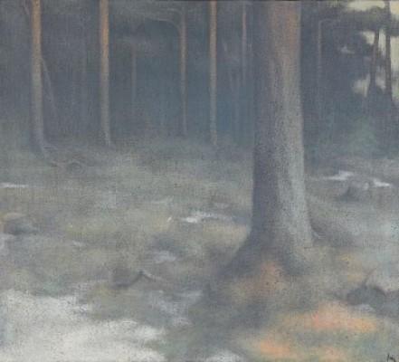 Skogsglänta by Peter FRIE