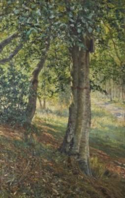 Fontainebleauskogen I Sommarljus by Anshelm SCHULTZBERG