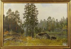 Skogslandskap by Halvor HALVORSEN
