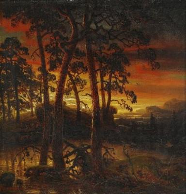 Aftonrodnad över Skogslandskap by Marcus LARSON