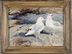 Måsfåglar by Mosse STOOPENDAAL