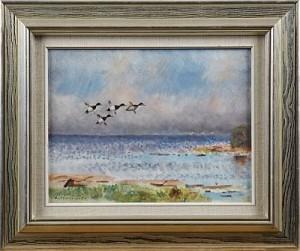 Sjöfåglar by Lindorm LILJEFORS