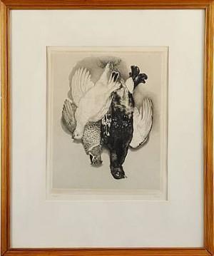 Döda Fåglar by Stig BORGLIND