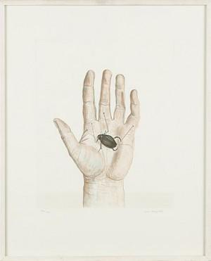 Komposition Med Hand Och Skalbagge by Lena CRONQVIST