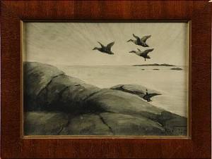 Flygande Sjöfåglar by Nils TIRÉN