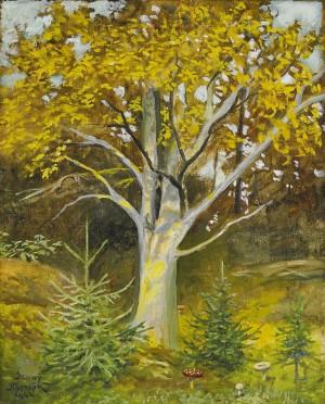 Skogen by Jenny NYSTRÖM