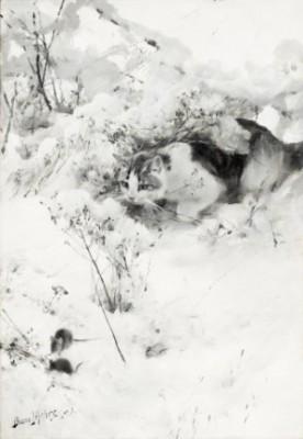 Smygande Katt by Bruno LILJEFORS