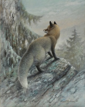 Räv by Rune JOHANSSON
