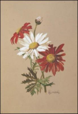 Blommor by Amelie LUNDAHL