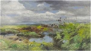Slättlandskap Med Lyftande änder by Mosse STOOPENDAAL
