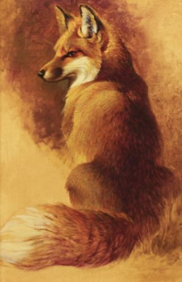 Fox by Ezra TUCKER