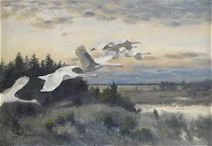 Sträckande Svanar by Bruno LILJEFORS