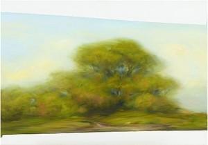 Landskap by Peter FRIE