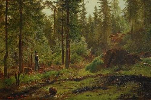 Skogsmotiv Med Man Vid Kolmila by Per Daniel HOLM