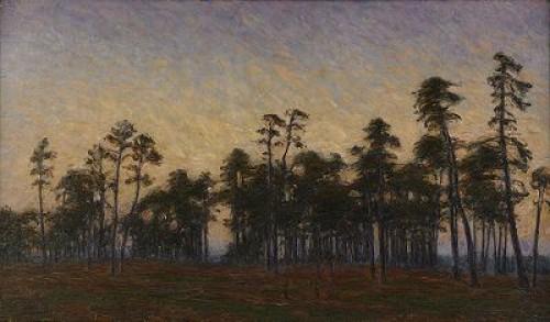 Aftonljus över Tallmon by Karl NORDSTRÖM
