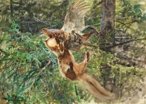 Barrskog Med Skogsmård Anfallande En Orrhöna by Bruno LILJEFORS
