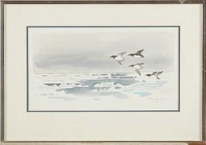 Flygande Fåglar över Islandskap by Gunnar BRUSEWITZ