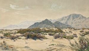 Palm Springs Desert Landscape by Gunnar WIDFORSS