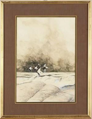Sträckande Sjöfåglar by Jan RHODIN
