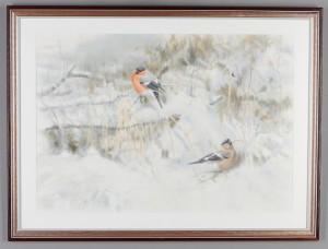 Fåglar by Roland JONSSON