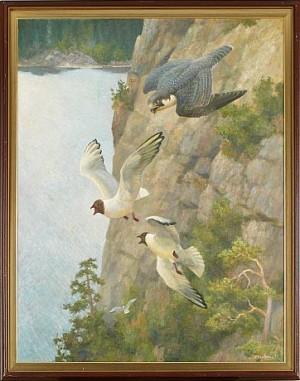 Motiv Med Rovfåglar by Jan Petter BRATSBERG