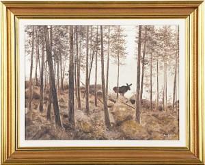 älg I Skogsbryn by Lennart SAND