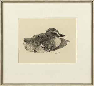 Fågelunge by Lars JONSSON