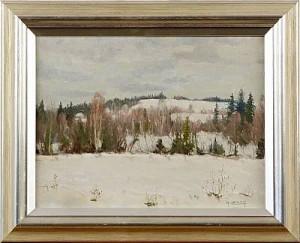 Vinterlandskap by Anders LOMAN