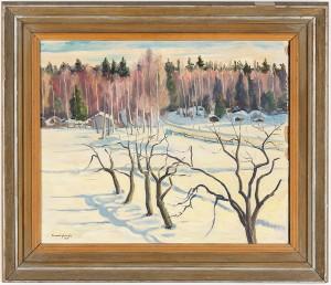 Solig Vinterdag Hälsingland by Bo Von ZWEIGBERGK