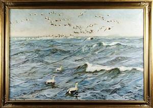 Sjöfågel I Utskärgården by William GISLANDER