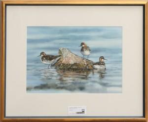 Fåglar by Bo LUNDWALL