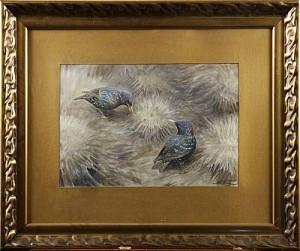 Fåglar by Nils TIRÉN