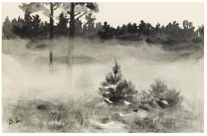 Landskapsstudie by Bruno LILJEFORS