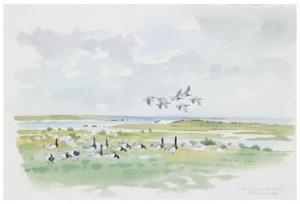 Sträckande Fåglar by Gunnar BRUSEWITZ
