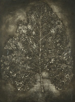 Cosmic Leaf by Dimitri Petrovich PLAVINSKY