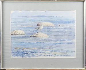 Ung Gråtrut by Lars JONSSON