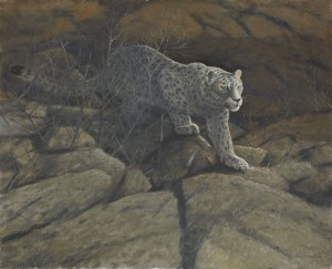 Snöleopard by Lennart SAND