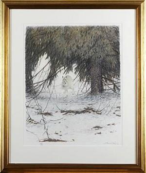 Vinterhare by Lennart SAND