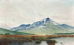 Snasahögarna by Arvid Mauritz LINDSTRÖM