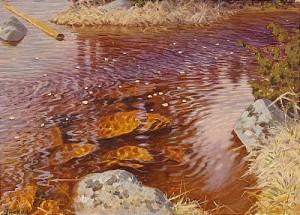 Rinnande Vatten by Gustaf FJÆSTAD
