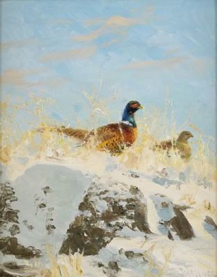 Vinterlandskap Med Fasantupp Och Höna by Thure WALLNER