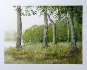 """Min Sommar"""" - Skogsparti by Robert HÖGFELDT"""