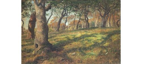 Skogsäng by Berndt LINDHOLM
