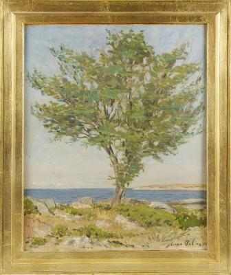 Trädet På Kobben by Einar PALME