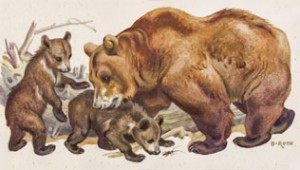 Mother Bear With Children by Norbertine Von BRESSLERN-ROTH