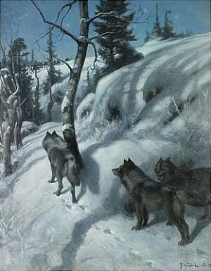 Vargar I Vinterlandskap by Johan TIRÉN