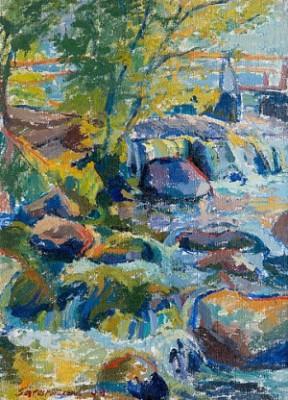 Rapids by Reidar SÄRESTÖNIEMI