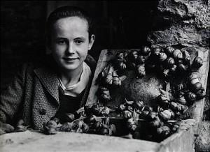 Pojken Med Sniglarna, Jura, Schweiz 1949 by Christer STRÖMHOLM