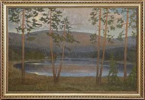 Månbelyst Tjärn by Anders LOMAN