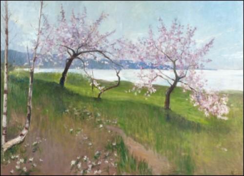 Blommande äppelträd by Amelie LUNDAHL
